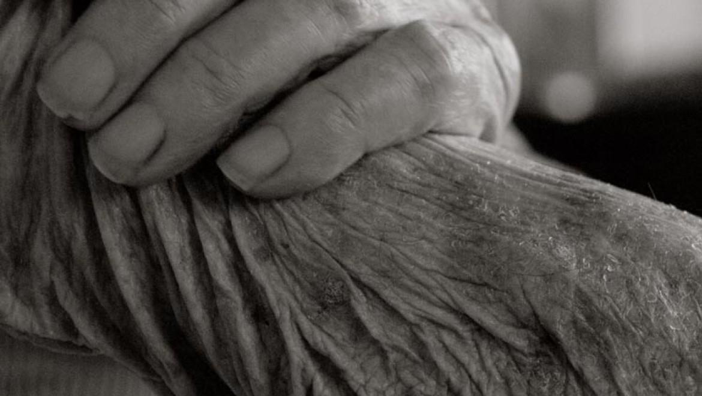 מראה הגוף האנושי בגיל 100